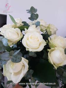 Lifestyle pur! Für Liebhaber und Kenner... aber auch für all diejenigen die es noch werden wollen.   Der Minimumpreis versteht sich für mittellange Rosen. Die Abbildung (höherer Preis) zeigt langstielige Rosen.