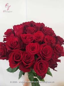 Möchten Sie Ihr Herzblatt überraschen? Dieser klassische Rosenstrauss ist die wohl schönste Art jemandem zu zeigen, dass er Ihnen am Herzen liegt. Die Glasvase ist nicht im Preis inbegriffen.   Der Minimumpreis versteht sich für mittellange Rosen. Die Abbildung (höherer Preis) zeigt langstielige Rosen.