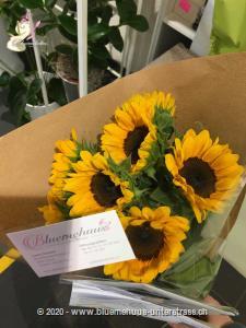 Sonnenblumen stehen für Heiterkeit und Optimismus. Na, Lust jemandem eine Freude zu machen?   Für dieses Produkt werden Sonnenblumen mit einem mittelgrossen Kopf verwendet. Stiele: 9 Stk.