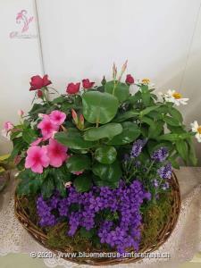 Mit diesem bunten Blumengruss (Pflanzenschale) wird jemand aber ganz schön lang an Sie denken!