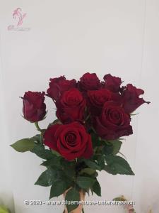 Rosen schenken war nie einfacher. Sie möchten einen Strauss aus puren Rosen ohne Grün? Stellen Sie jetzt hier Ihren individuellen Rosenstrauss zusammen. Wählen Sie zwischen einer und 100 Rosen. Die Freude wird, so oder so, riesig sein. Die Glasvase ist nicht im Preis inbegriffen.