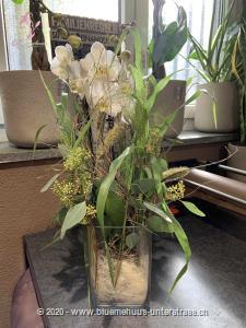 Dieses Werkstück wird vor Ort individuell und frisch zusammengestellt. Diese Komposition besteht aus einer Orchideenpflanze, die der Abbildung in Form und Farbe möglichst entspricht. Die optimale Gestaltung des Präsents liegt in den kompetenten Händen unserer Partner-Floristen.