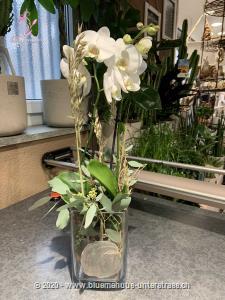 Dieses Werkstück wird vor Ort individuell und frisch zusammengestellt, je nach Erhältlichkeit mit Schnitt-Orchideen oder mit einer Orchideenpflanze, so dass es der Abbildung in Form und Farbe möglichst entspricht. Die optimale Gestaltung des Präsents liegt in den kompetenten Händen unserer Partner-Floristen.