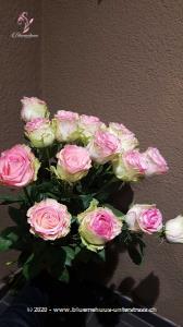 Rosa Rosen sind einfach trendig und unverbindlich ... und lässt Frauenherzen höher schlagen. Die Glasvase ist nicht im Preis inbegriffen.   Der Minimumpreis versteht sich für mittellange Rosen. Die Abbildung (höherer Preis) zeigt langstielige Rosen.