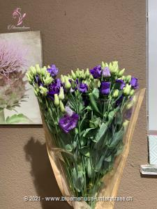 The prairie gentian, as the lisianthus is also called, makes us dream of infinite landscapes. A wild beauty that stands for appreciation, charisma and gratitude. Stems: 10 pcs.