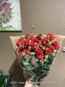 Nichts vermittelt Liebe & Romantik besser als Rosen. Unsere Sprayrosen bezaubern durch ihre vielen Blütenköpfe und sorgen für einen Wow-Effekt.   Stiele: 8 Stk.