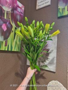 Sie möchten einen Strauss aus puren Lilien ohne Grün? Stellen Sie Ihren individuellen Lilienstrauss zusammen. Wählen Sie zwischen einer und 40 Lilien. Die Freude wird, so oder so, riesig sein.