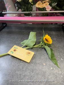 Klein aber fein, schöner kann eine kleine Sonne nicht sein.   Für diesen kleinen Sonnenstrahl wird eine grossköpfige Sonnenblume verwendet.