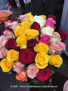 24 Rosen zu einem kunterbunten Rosenstrauss gebunden. Ein echter Blickfang und passend zu fast jedem Anlass ...